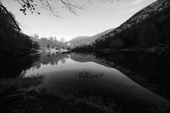 Black and White Mirror (Leo Riva) Tags: autumn bw white lake black france reflection automne de pond lac reflet ariege pyrenees etang bethmale couserans