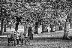 Bench Couple (Giles Guthrie) Tags: geocity camera:make=canon exif:make=canon exif:focallength=135mm geostate geocountrys exif:lens=ef135mmf2lusm exif:aperture=ƒ40 gilesguthriecom exif:model=canoneos1dx camera:model=canoneos1dx exif:isospeed=640 wwpw2014 wwpwedinburgh2014 geo:lon=31968633333333 geo:lat=55942576666667