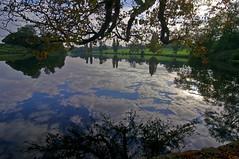 1042-22L (Lozarithm) Tags: reflections landscape lakes 12mm 1224 kx bowood derryhill smcpda1224mmf40edalif pentaxzoom