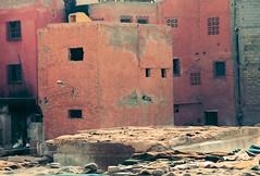 2014 07 - Marrakech & Ouzoud Morocco  1911 (ikeofspain) Tags: city trip travel holiday hot nature leather dessert waterfall market tea northafrica mint camel morocco heat marrakech souk marrakesh cascada tannery ouzoud littleadventures berbertoad azalil