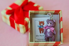 Teddy (Puno3000) Tags: bear macro glass canon photo teddy decoration 60d