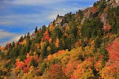 A Ridge on Grandfather (i_am_durin) Tags: autumn color colour fall fallcolor northcarolina blueridgeparkway grandfathermountain northcarolinamountains canon24105f4 durinsday canon6d