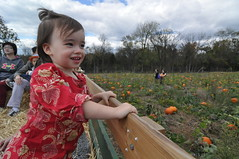 2014-10-18 12.37.58 (whiteknuckled) Tags: pumpkin lily farm homestead applepicking outing 2014 poolesville