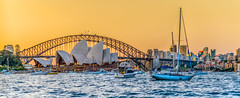 SYDNEY HARBOUR (Sydney BIogger) Tags: ocean city travel blue light sunset sea summer urban seascape green love nature water yellow architecture landscape geotagged photography landscapes photo nikon raw cityscape natural live capital fine wide sydney australia wideangle fullframe nikkor fx hdr highdynamicrange afs lightroom photomatix f28g 1424 1424mm leesfilter sw150 d800e nikond800e 36megapixel