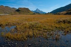 Herbst ist es (bounty390) Tags: see wasser herbst natur gras grn braun blau bergsee farbe schilf vorarlberg herbstlich kalbelesee