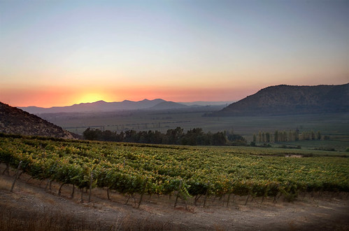 Thumbnail from Santa Rita Winery