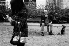 Torino 0409 (malko59) Tags: torino turin biancoenero blackandwhite urban street panchina bench cane dog