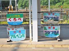 Day 7 (dogman!) Tags:      japan olympus omd em1