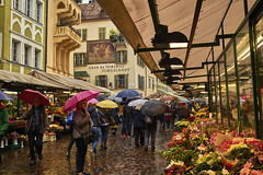 Regenschirme in Bozen (Helmut Reichelt) Tags: schirme obstplatz markt regen oktober herbst bozen bolzano streetphoto südtirol altoadige italien altstadt leica leicam typ240 captureone9 colorefexpro4 leicasummilux35mmf14asphii