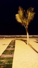 Beach by night (Roving I) Tags: beaches access wheelchairs sea surf waves palmtrees whitesand couples nightlife danang vietnam vertical