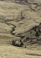 a creek runs through it dm (chjsbny) Tags: nationalbisonrange antelopeflats autumn montana charlesjanson digimarc