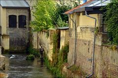 Valkenburg, vissen in de Geul (Astrid1949) Tags: valkenburg september 2016