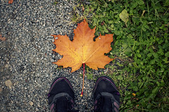 Pieces of my autumn (MargitHylland) Tags: feet shoes leef red autumn fall herbst gravel norway norge oppland gjvik nordly northern light sunrise