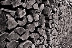 Holz vor der Htte (heiko.moser (+ 9.800.000 views )) Tags: holz woods monochrom mono noiretblanc natur nb nero nature natura bw blackwhite blancoynegro sw schwarzweiss schwarzweis canon heikomoser