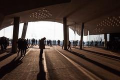 Shadows (michael_hamburg69) Tags: hamburg germany deutschland hafen harbor hansestadt elbphilharmonie elphi plaza observationdeck sightseeing aussichtsplattform
