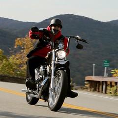 Harley-Davidson 1610164674w (gparet) Tags: bearmountain bridge road scenic overlook motorcycle motorcycles goattrail goatpath windingroad curves twisties