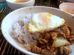 Gapao rice from Prick Prick Thai @ Kanda (Fuyuhiko) Tags: gapao rice from prick thai kanda     thail cusine food  tokyotokyo tkyo tokyo