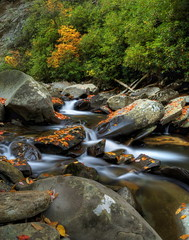 Mountain Stream (Tom Mortenson) Tags: serene fall autumn digital canon canoneos canon6d nature scenery scenic landscape water watercourse colorful usa america northamerica stream rocks rocky creek nationalpark smokies smokymountains longexposure cascades brook rapids tennessee gatlinburg geotagged smokymountainsnationalpark hdr tonemapping photomatix 24105l