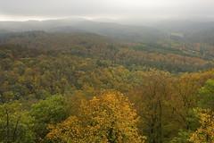 Thringer Wald (*Gegenlichtfreundin*) Tags: deutschland thringen thringerwald wald herbst herbstwald wartburg eisenach nebel oktober wartburgblick