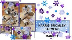 Harris Girls' Academy Bromley (harrisfed) Tags: harrisgirlsacademybromley 28112016 theweekinpictures christmas