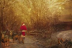 *** Santa's walk*** (xandram) Tags: road winter santa deer snow snowflakes texturesmyown photoshop