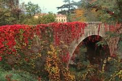 Bloody bridge (Croix-roussien) Tags: ardèche bridge pont automne rouge red autumn france