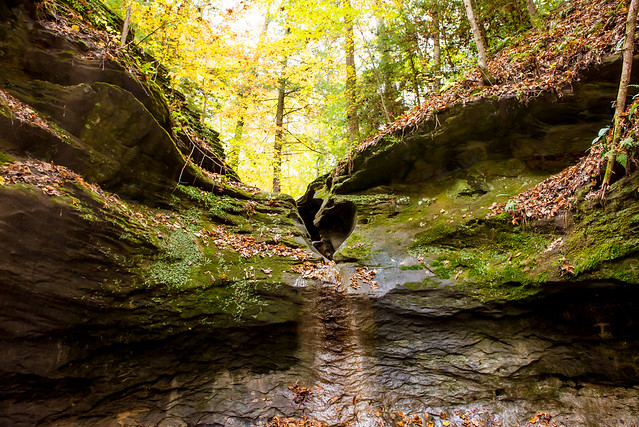 Turkey Run State Park - Rocky Hollow-Falls Canyon - October 30, 2016