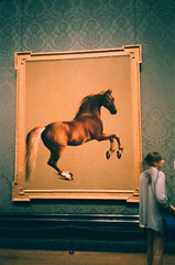 """Whistlejacket,"" by George Stubbs (oh it's amanda) Tags: london fujisensia400 expiredfilm expired nationalgallery museum pentaxespiomini pentaxuc1 londonengland england artmuseum"
