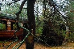 DSC_1592 (andrzej56urbanski) Tags: chernobyl czaes ukraine pripyat prypeć kyivskaoblast ua