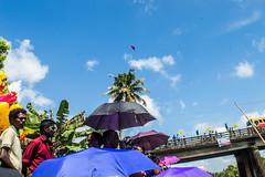 Spectators lined up |  Payipad boat race 2016,Alappuzha,Kerala. (vjisin) Tags: kerala alappuzha payipad india asia photostory nikon nikond3200 tradition seashore nikonofficial documentary composition ngc outdoor people indianheritage backwaters indianculture cloud daylight sky skyline tree green iamnikon landscape lake streetphotography indianstreetphotography clouds trees