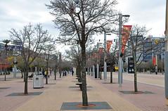 0008 Sydney Olympic Park.jpg (Tom Bruen1) Tags: 2016 homebush sydneyolympicpark trees