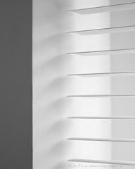 _C0A6558REWS Light Management I,  Jon Perry, 26-11-16 zaw (Jon Perry - Enlightenshade) Tags: blackandwhite bw jonperry enlightenshade arranginglightcom 261116 20161126 blinds lines light horizontal control manage venetianblinds