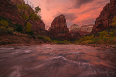 Temple of Aeolus (Willie Huang Photo) Tags: zionnationalpark zion virginriver zioncanyon canyon utah southwest angelslanding fall autumn sunset national park landscape scenic nature