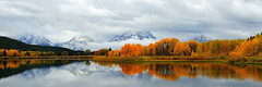 Oxbow Autumn (alan.griffin16) Tags: autumn fall grandtetonnationalpark wyoming oxbowbend snakeriver reflection