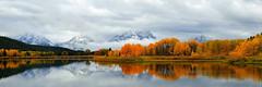 Oxbow Autumn (Explored) (alan.griffin16) Tags: autumn fall grandtetonnationalpark wyoming oxbowbend snakeriver reflection