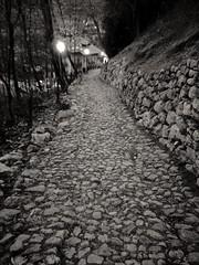 La Via (alexandrosmccarthy) Tags: strada pietre via cammino monocromo mono biancoenero sentiero trovare road stones blackandwhite cercare esplorare meta trentino incastri it flickr fotoinbiancoenero