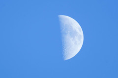 Today's Moon (Colorful-wind) Tags:  autumn color nature moon 2016  fujifilm air moonlight  xt1 fukuoka sky    japan lightandshadow
