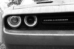 The Challenger (JSB PHOTOGRAPHS) Tags: dsc138900009 dodge nikon d1 1755mm challenger dodgechallenger 2016
