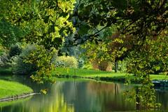 JEUX DE LUMIERE - parc du château de SEGREZ  - ESSONNE (jmsatto) Tags: arbres parc reflets étang essonne platinumheartaward segrez infinitexposure
