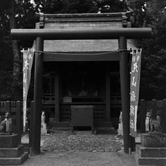 (shirahamash0ta) Tags: bw 6x6 film japan mediumformat blackwhite kamakura 120film squareformat fujifilm medium format neopan yashica acros 100iso yashikad