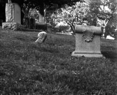 low (Nesster) Tags: orange cemetery graphic nj sw 23 100 montclair rodinal fujinon rosedale pacemaker fomapan 13556