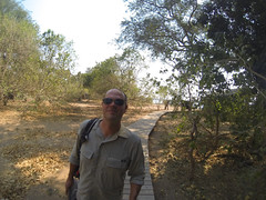 G0182147 (bill_ebling) Tags: africa camp elephant love honeymoon tent safari zimbabwe manapools ruckomechicamp manawest
