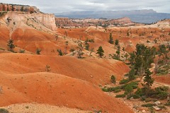 IMG_2459 (bluegrass0839) Tags: canyon national hoodoo bryce zion zionnationalpark brycecanyon nationalparks narrows hoodoos horsebackride parkthe