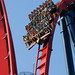 "Sheikra • <a style=""font-size:0.8em;"" href=""https://www.flickr.com/photos/76781152@N08/15283209850/"" target=""_blank"">View on Flickr</a>"