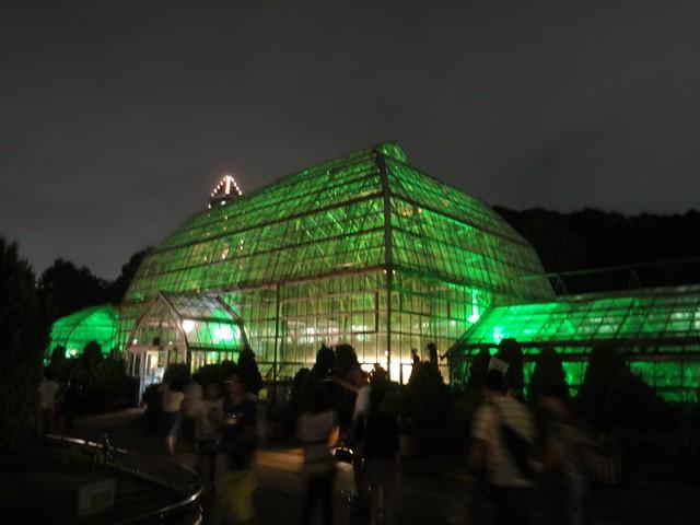 植物園の温室もグリーンにライトアップ。|名古屋市東山動植物園