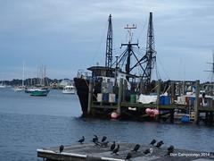 247-248 Newport (Don C. over 2 Million Views) Tags: ri boats harbor dock newengland rhodeisland newport fishingboat tauck