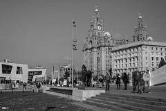 Down at the docks (leecaine) Tags: uk england people bw history liverpool docks walk steps