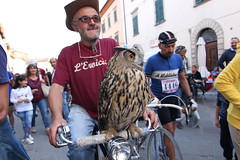Eroica_2014_Cycling_Vintage_Owl_Bicycle_©FMphotosCoUK_IMG_0433 (Fabrizio Malisan Photography @fabulouSport) Tags: travel history nature birds animal animals bike bicycle vintage photography cycling photographie cyclist wildlife events bikes bicicleta bicycles event fabrizio tuscany owl chianti ciclismo ciclista siena prey toscana tours velo animali touring gaiole eroica bicicletta epoca storico 2014 civetta gufo cyclisme senese manifestazioni cyclingtours malisan ciclistiche fmphotoscouk