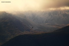- Tra i boschi ed il cielo (Giovanni Santostefano) Tags: italia cielo  abruzzo    nibbio boschi
