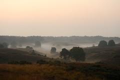 Zaterdagmorgen op de Posbank (marcoderksen) Tags: sunset oktober morgen veluwe posbank zonsopgang 2014 zaterdag zaterdagmorgen